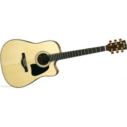 Guitare IBANEZ AW3000CE NT
