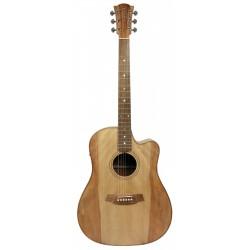 Guitare COLE CLARK FL2EC BM