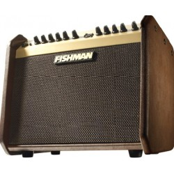 FISHMAN LOUDBOX MINI 60