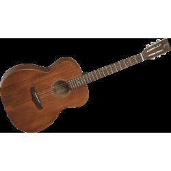 Guitare folk TANGLEWOOD TW 130